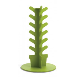 Cactus portascarpe.