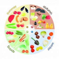 Quattro stagioni - alimenti...