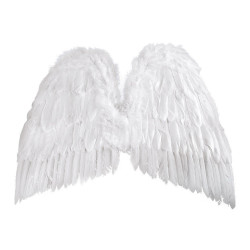 Ali degli Angeli.