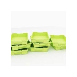 Vaschette piccole verdi - 8...